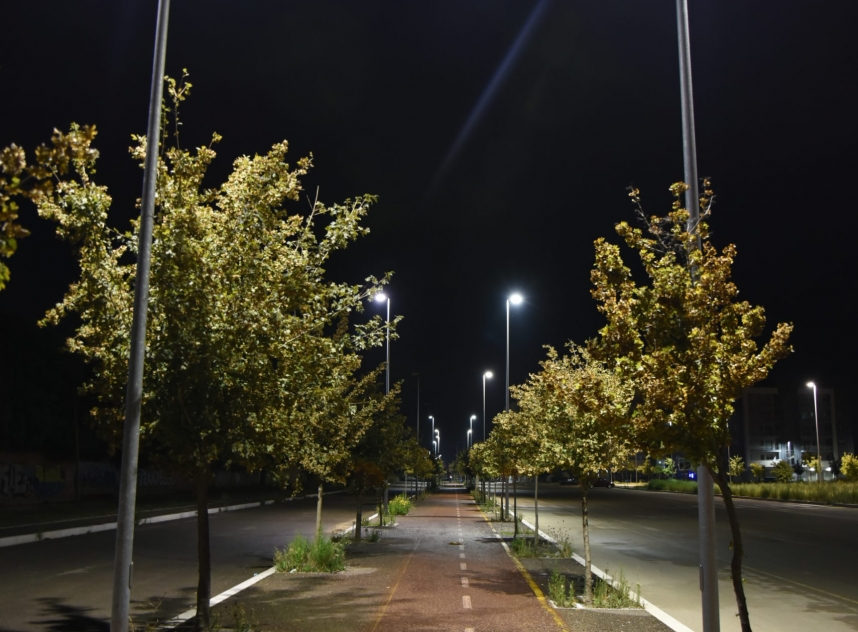 Night Bicycle Path Illuminated By Lamps With Trees